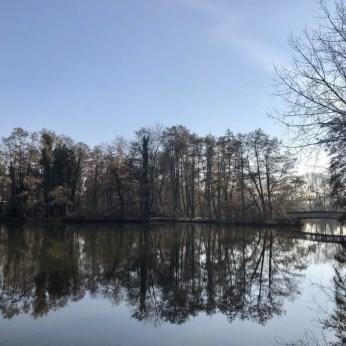 Am Teich Kükenbrack im Inselpark Wilhelmsburg