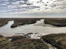 Ein Priel - durch sie gelangt das Meerwasser bis in die Salzwiesen