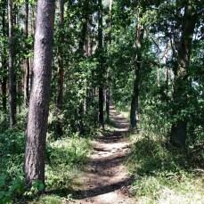 Der schmale Wanderweg zwischen Freest und Spandowerhagen