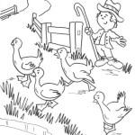 تلوين طيور في المزرعة