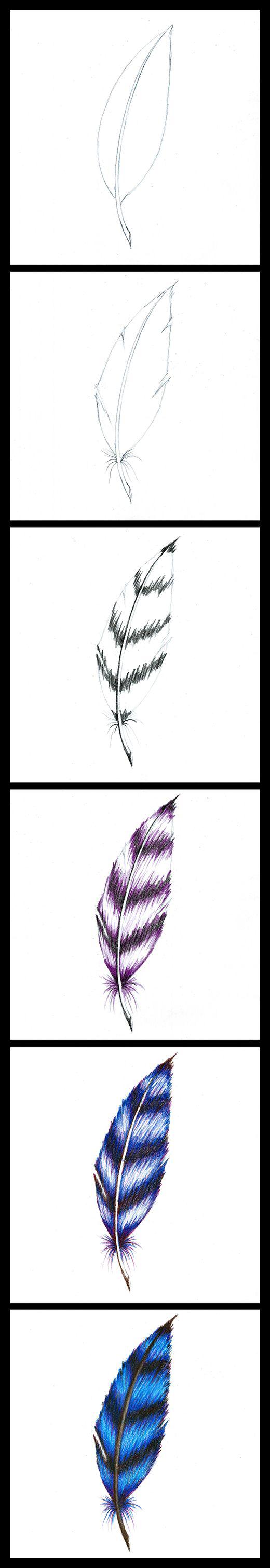 خطوات رسم الريشه