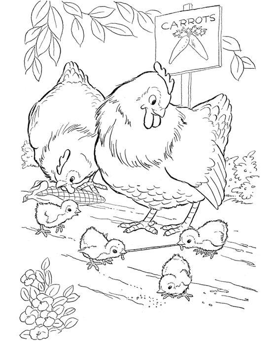 تلوين دجاجات في فصل الربيع