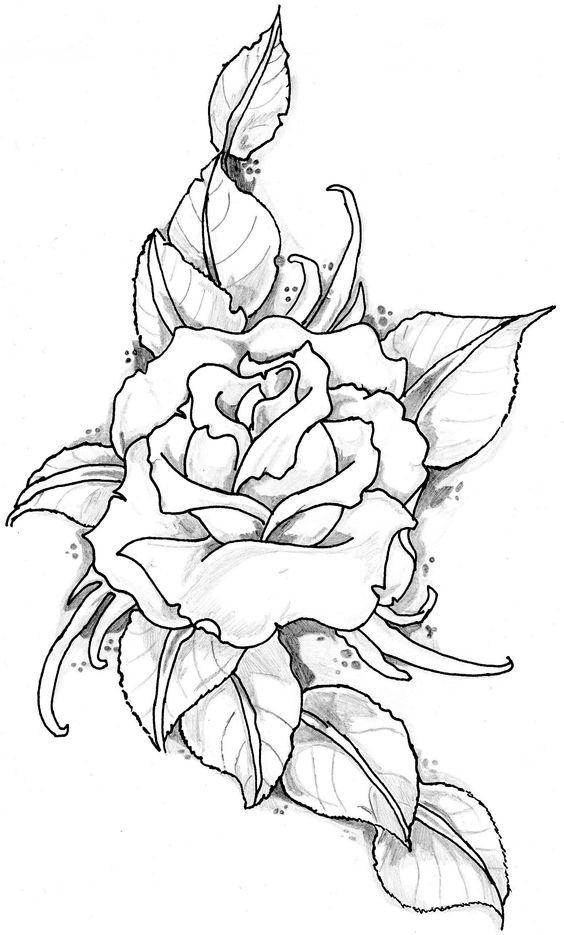 تلوين وردة