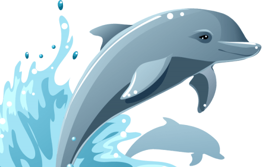 Pictures of Dolphins  Dolphin Clip Art