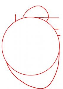 كيف ارسم قلب حقيقي تعلم رسم قلب