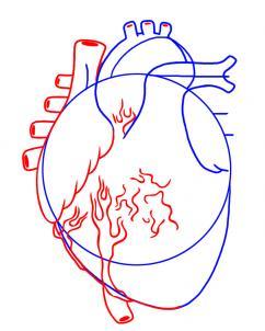 كيف ارسم قلب