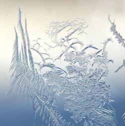 WindowFrost_Crystals5