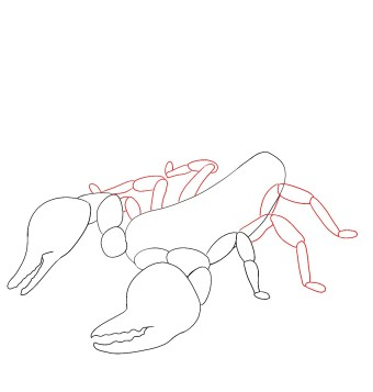 How To Draw A Scorpion Step 5