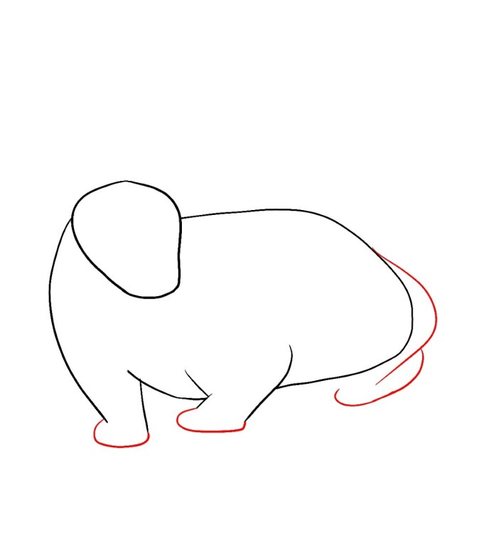 How To Draw A Badger Step 3