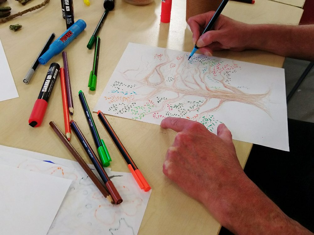 Exploring the world of trees at Clydebank art group