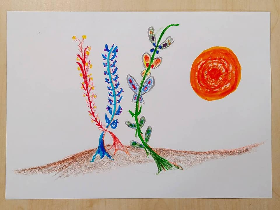 Exploring mysterious flowers, maps and mazes through the landscape