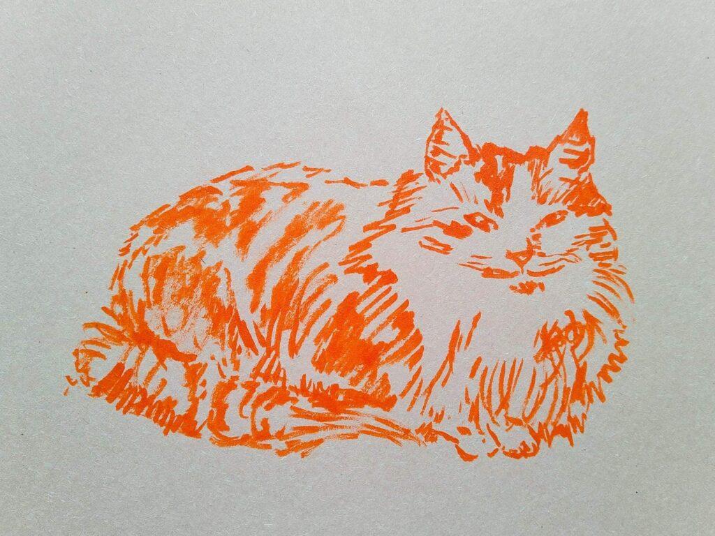 Blair's cat drawing