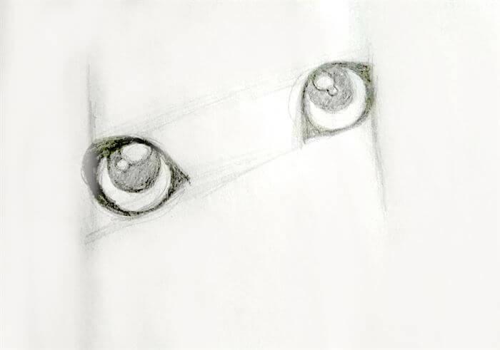 Step 6-dog eye drawing