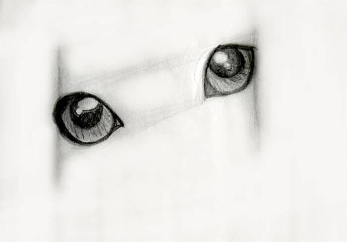 Step 7-dog eye drawing