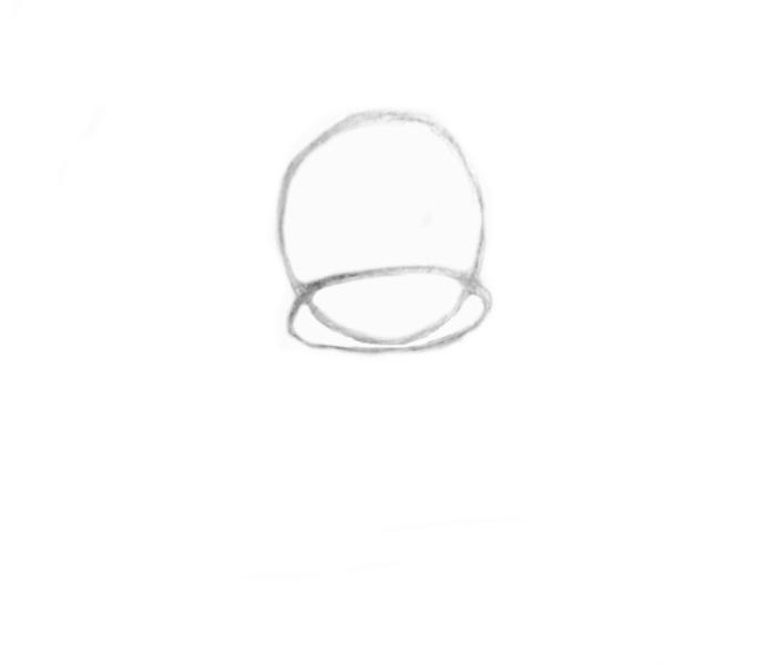 oval snout shape-cocker spaniel