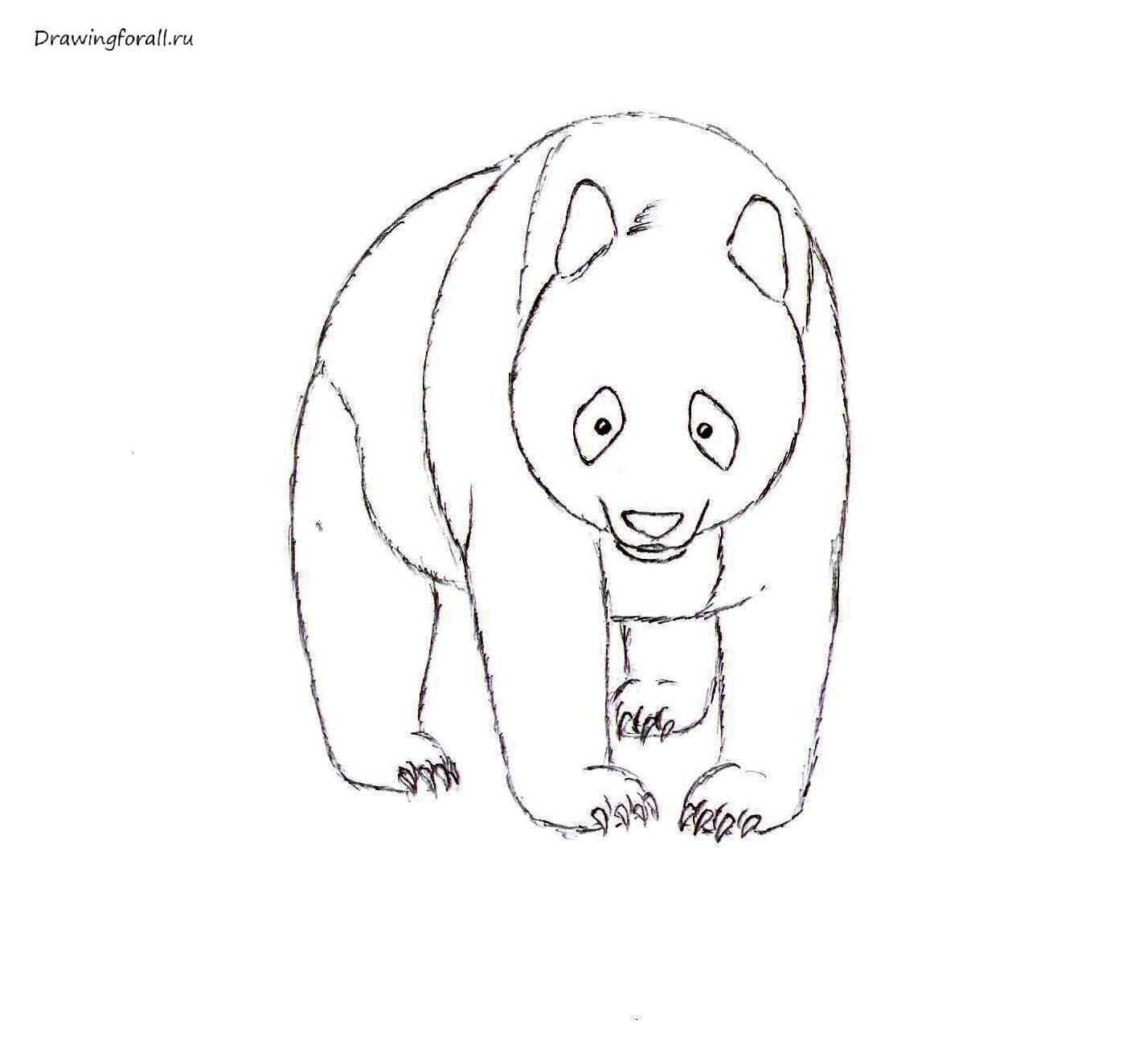 рисунок панды поэтапно гомер, привыкший