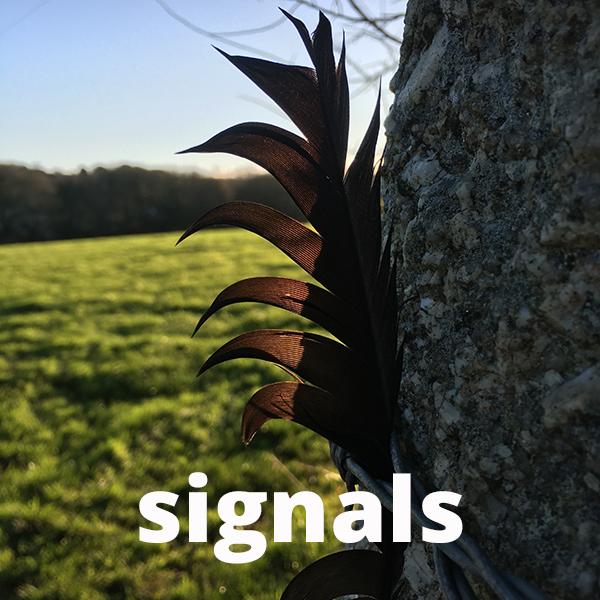 signals header