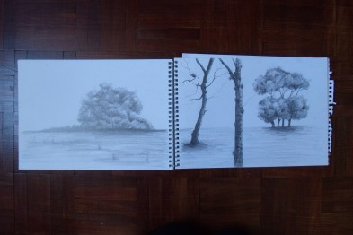 Sketchbook - trees in graphite