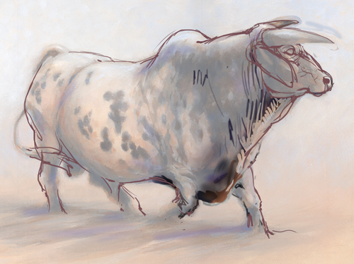 Rodeo Bull with Overlays