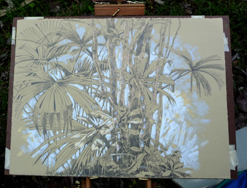 Yesterday's big drawing: palms at the edge of the forest.