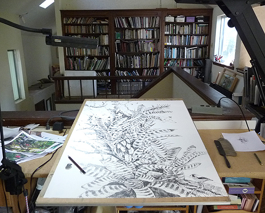 """A new work for my show, field sketches combined in the studio on a large sheet of paper 30"""" x 39"""""""