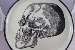 Skull plate, based on Victorian Scientific Illustration