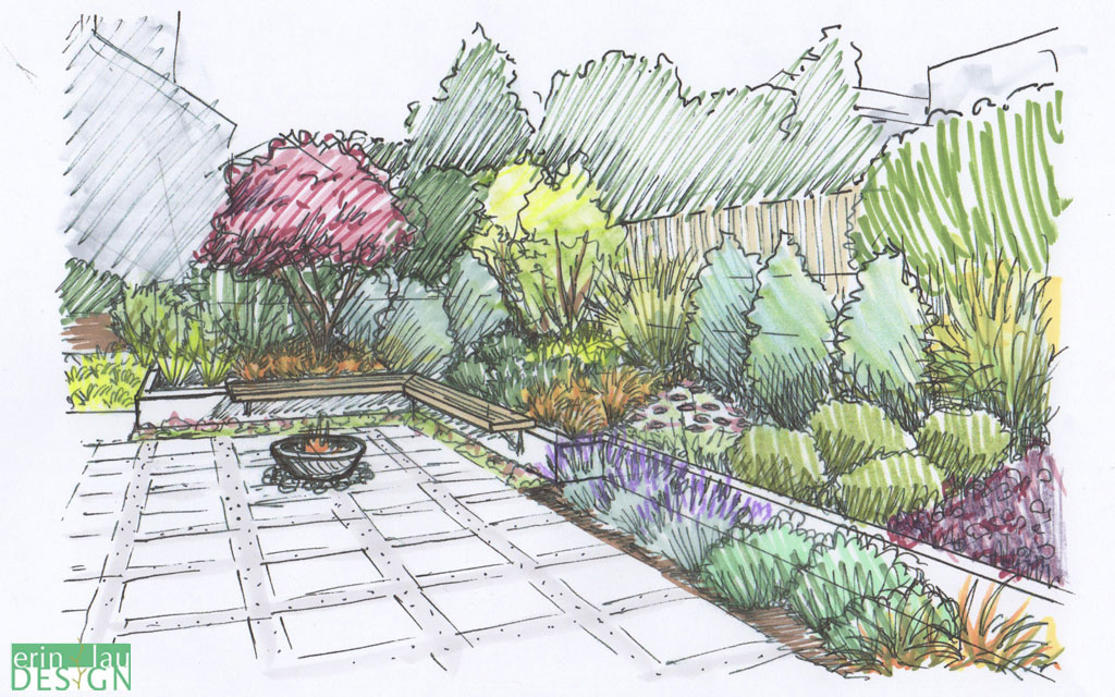 Sketches Landscape Yard Front
