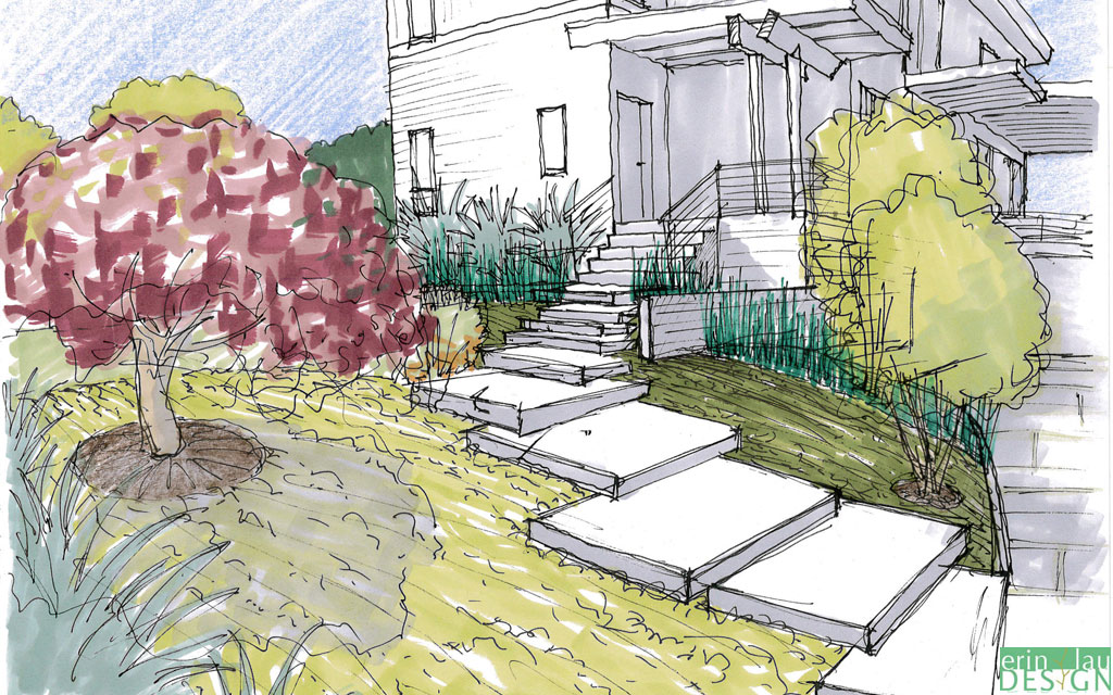Sketches Front Landscape Yard