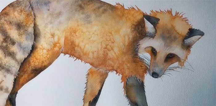 4. Watercolor Fox