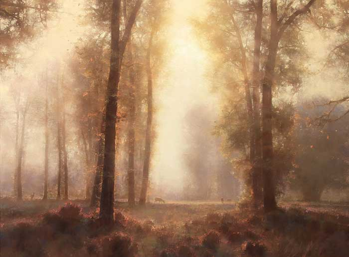 Brent Cotton, Under The Tall Cottonwoods