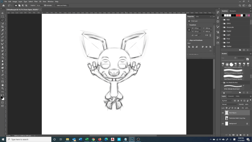 How to Draw Chihuahua - Step 1 - Rough Sketch