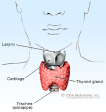 Human thyroid diagram Hypothyroidism