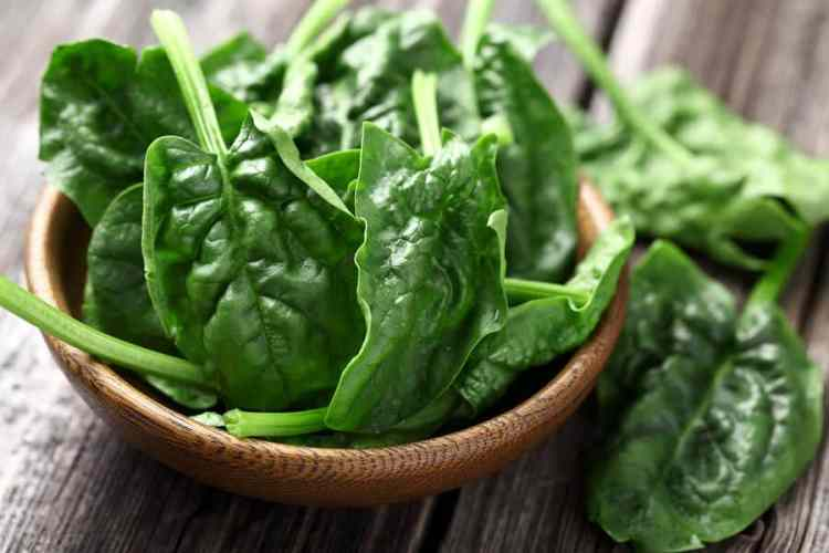 Resep praktis salad bayam