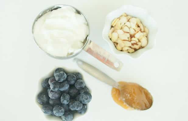 Blueberry Yogurt Protein Bite ingredients