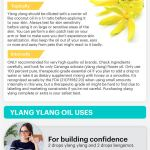 Ylang Ylang Benefits Uses Recipes And Side Effects Dr Axe