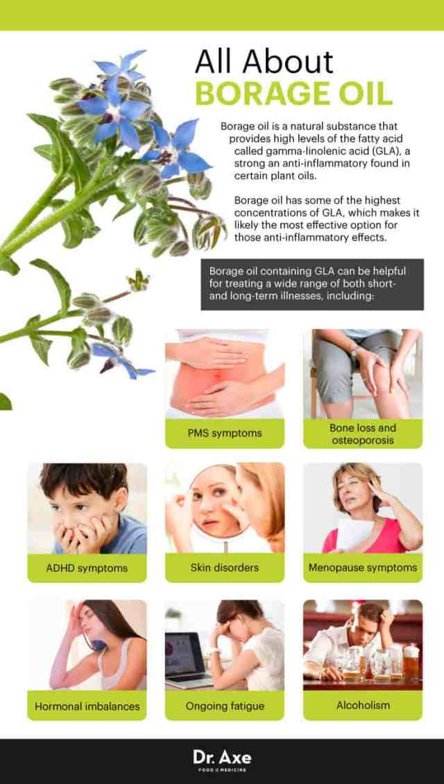 All about borage oil - Dr. Axe