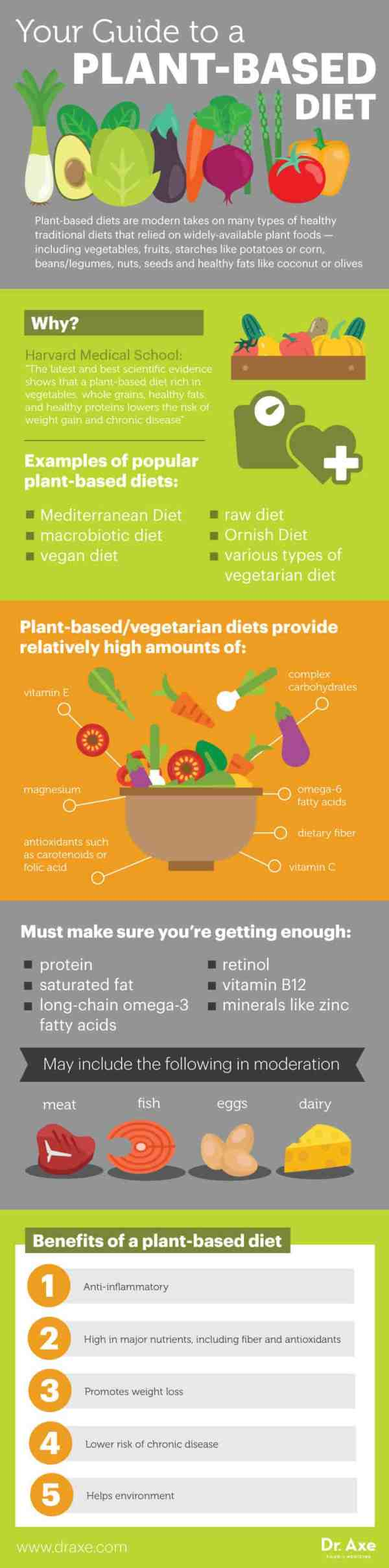 Plant-based diet guide - Dr. Axe
