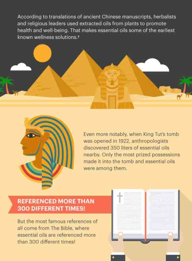 Essential oils in Egypt graphic