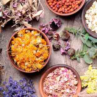 Image result for supplement and herbal recipe images