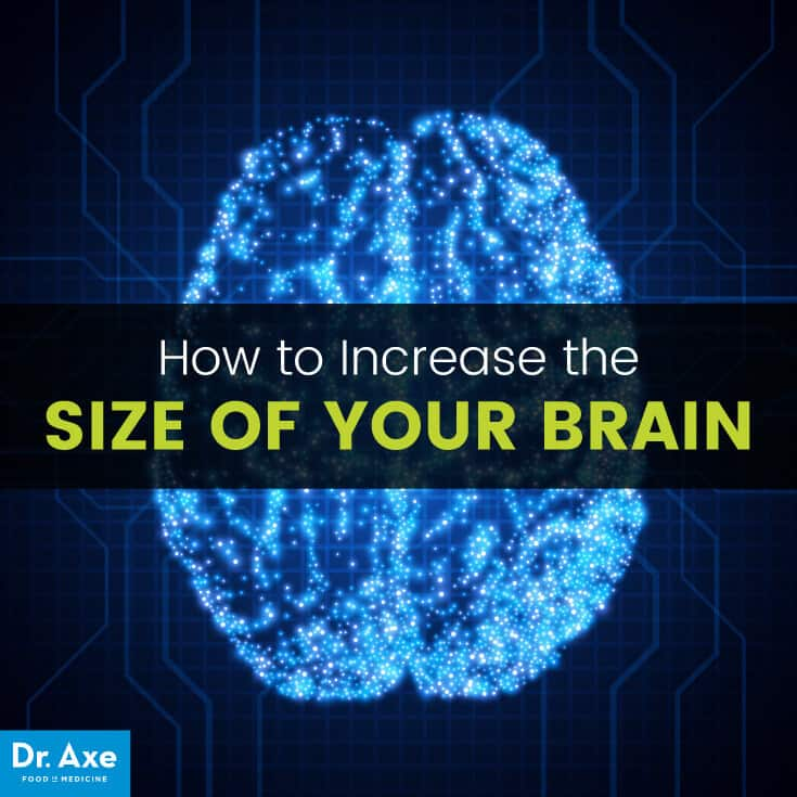 Increase size your brain - Dr. Axe