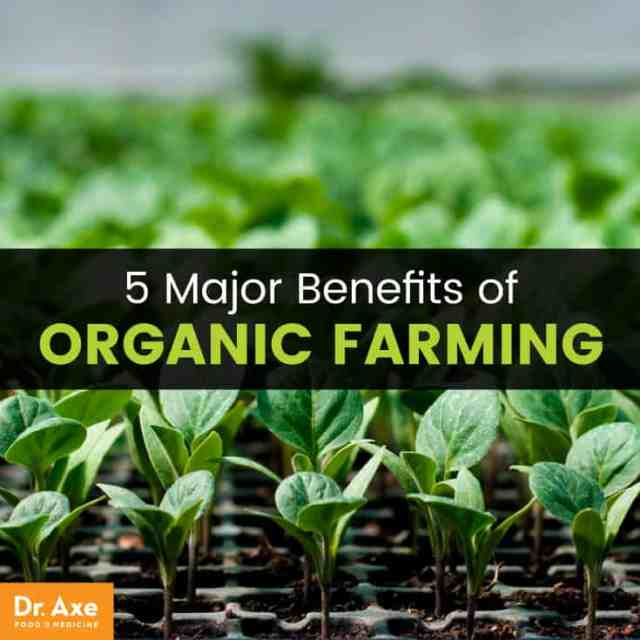 Organic farming - Dr. Axe