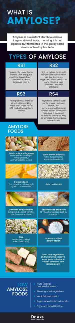 Amylose - Dr. Axe