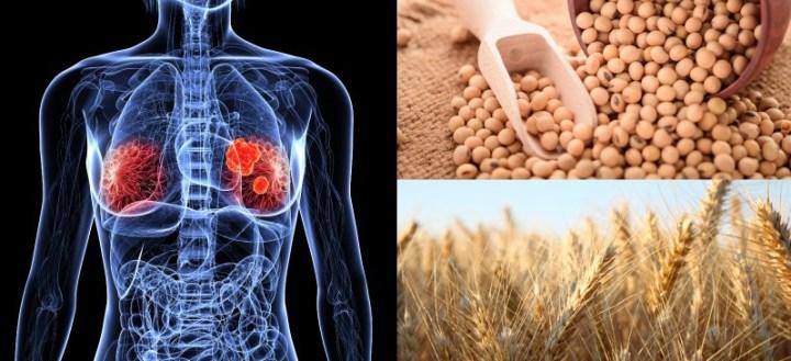 High estrogen foods to avoid - Dr. Axe