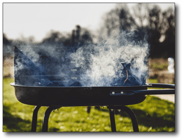 best cooking oil - grill