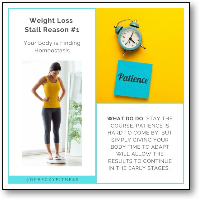 Weight Loss Stall Reason #1: Your Body is Finding Homeostasis