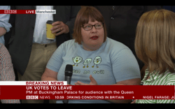 mini-bbc-news