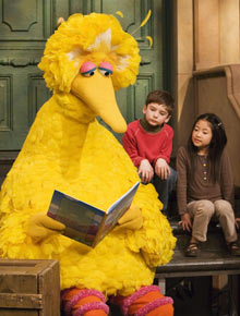 Big Bird reading