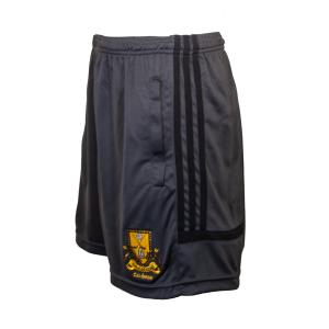 Lark Leisure Shorts