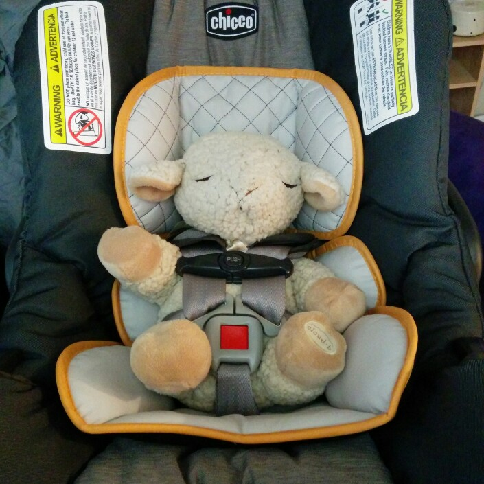 Car Seats: How to Choose