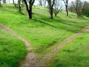 path-18197_960_720
